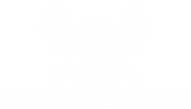 Uncommon Evolution logo